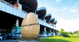 Nandos Giant Egg Kuching