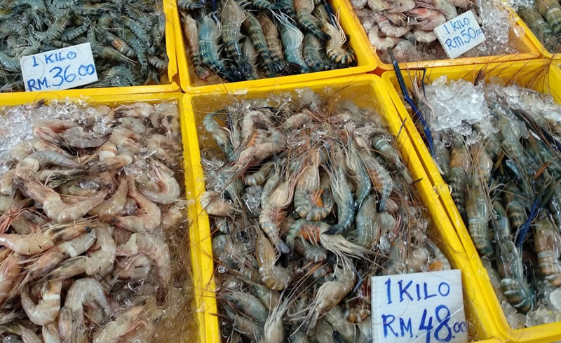 Fresh prawns at the Satok Sunday Market
