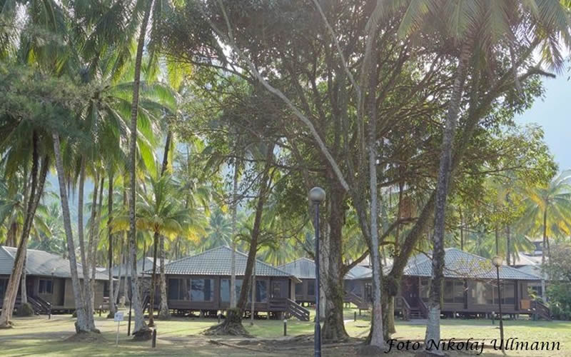 Chalets at Damai Beach Resort